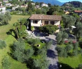 Villa Olivee